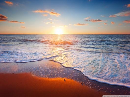golden_beach-wallpaper-1024x768