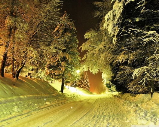 snowy_road_night-wallpaper-1280x1024