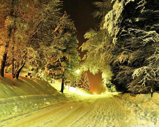 snowy_road_night-wallpaper-1280x1024