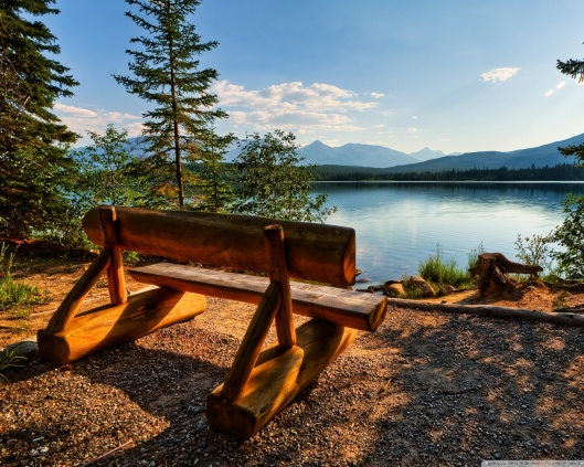empty_bench_near_the_lake-wallpaper-1280x1024