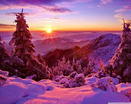 spruces_on_mountain_sunset-wallpaper-1280x1024