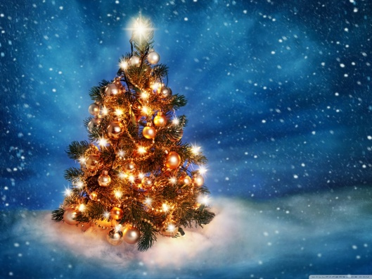 christmas_tree_2015-wallpaper-1280x960