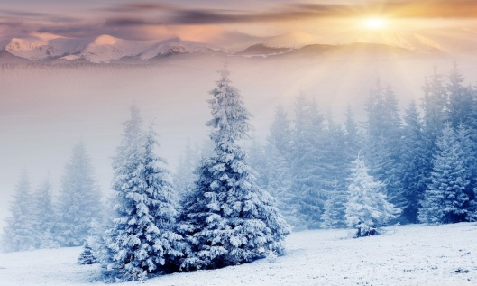 winter_wonderland_9-wallpaper-1280x768