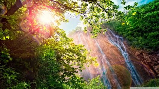 forest_waterfall-wallpaper-1920x1080