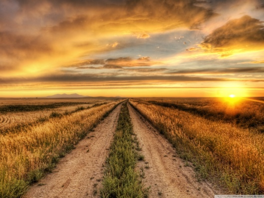 country_road_at_sunset-wallpaper-1152x864