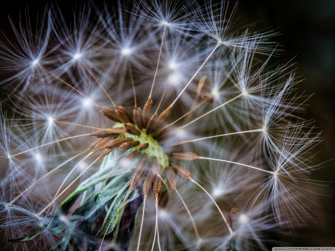 A Spiritual Awakening | Weekly Inspiration