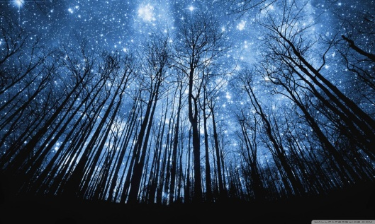 a_forest_of_stars-wallpaper-1280x768
